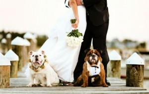 Weddings @Scaramuzzi Team
